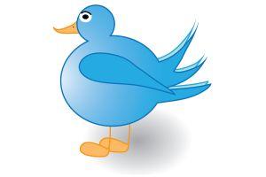 tweet-tweet-1030887-m