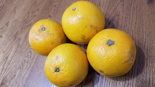 mario oranges.jpg