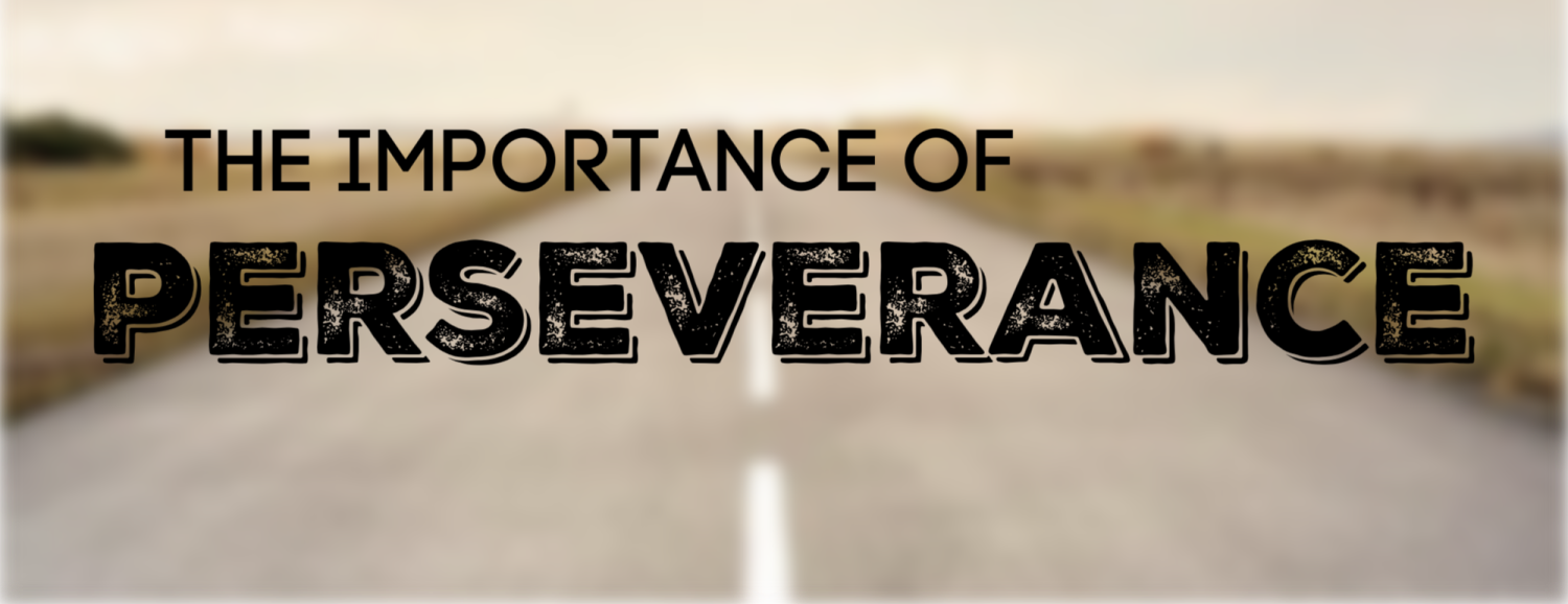 the importance of perseverance (2).png