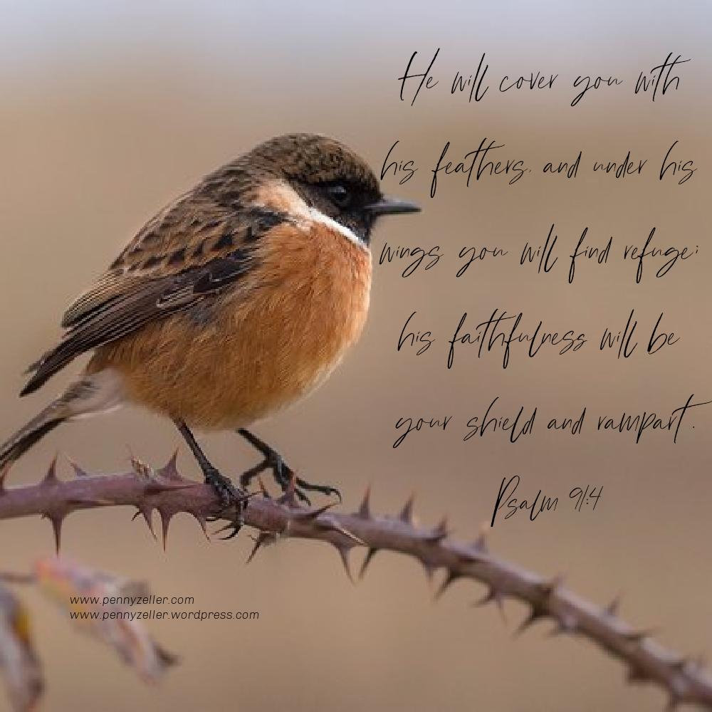 Psalm 91 4